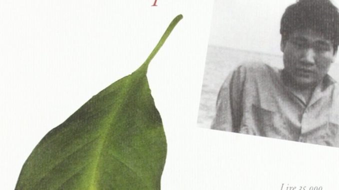 IL MARE DEGLI ALBERI MORTI, di Kenji Nakagami Recensioni Libri e News Unlibro