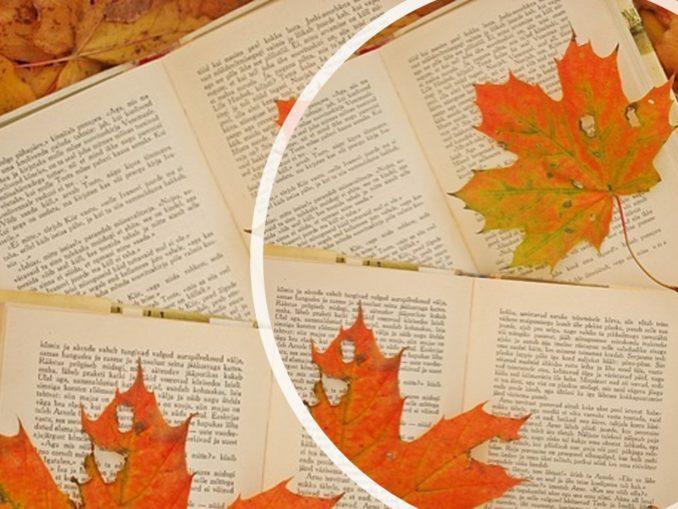 Letture autunnali - Ecco i libri da leggere in Autunno! Recensioni Libri e News UnLibro