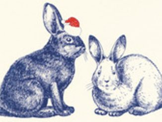 10 storie di Natale Recensioni Libri e News Unlibro