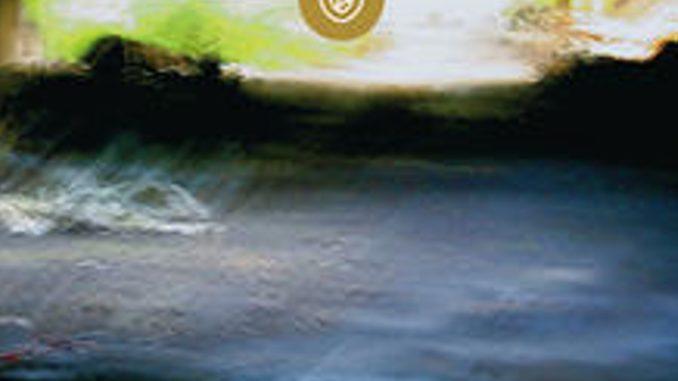 LA POSSIBILITÀ DI UN'ISOLA Michel Houellebecq Recensioni Libri e News Unlibro