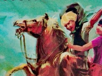 JIM PICCOLO COW-BOY Mario Faustinelli Recensioni Libri e News Unlibro