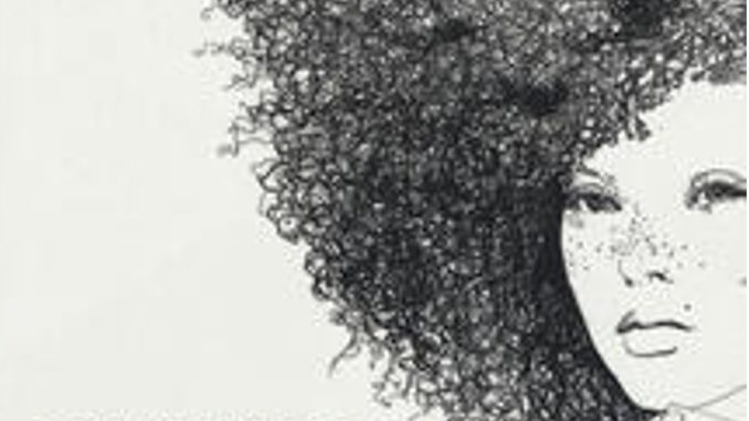 AMERICANAHChimamanda Ngozi Adichie Recensioni Libri e news