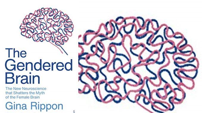 The Genered Brain