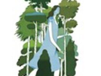 La donna degli alberi L. Marone
